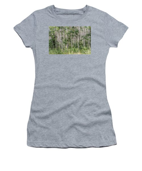 Grove Of Quaking Aspen Aka Quakies Women's T-Shirt