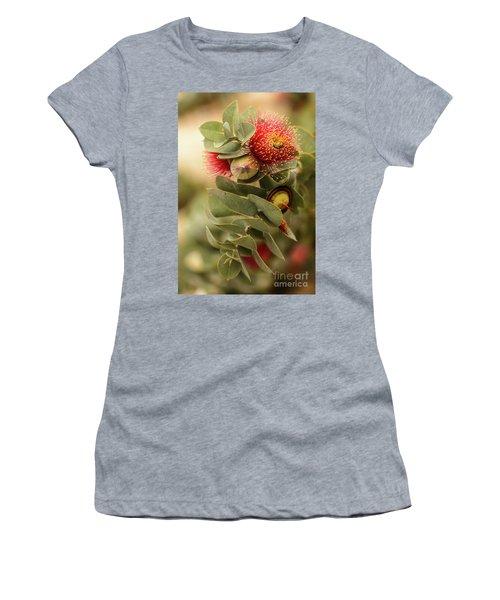 Gum Nuts Women's T-Shirt