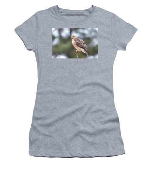 Hal The Hybrid Portrait 3 Women's T-Shirt
