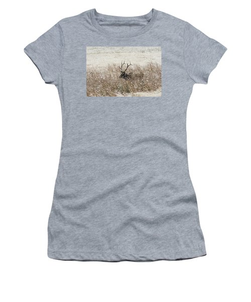 Harem Bull Women's T-Shirt (Athletic Fit)