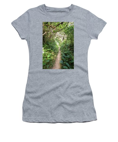 Hiking Path In The Atlantic Forest Women's T-Shirt
