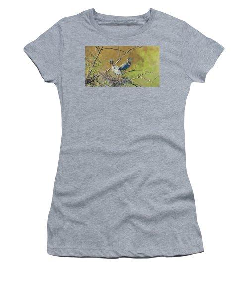 Home Town Blues Women's T-Shirt (Junior Cut) by Kelly Marquardt