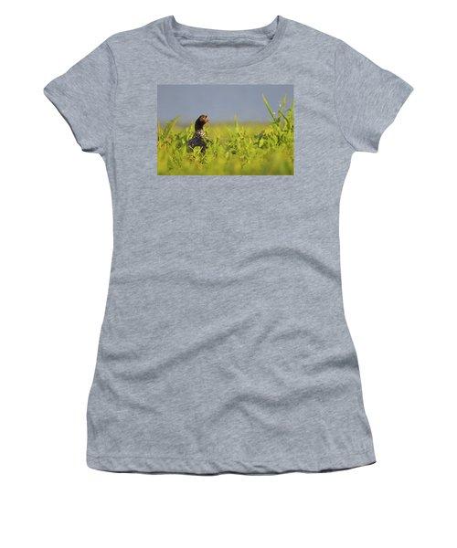 Horned Screamer Women's T-Shirt (Athletic Fit)