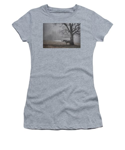 Horse And Tree Women's T-Shirt (Junior Cut) by Sumoflam Photography