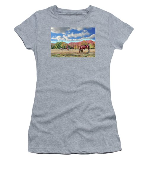 Horses Grazing At A Stable In Maryland Women's T-Shirt