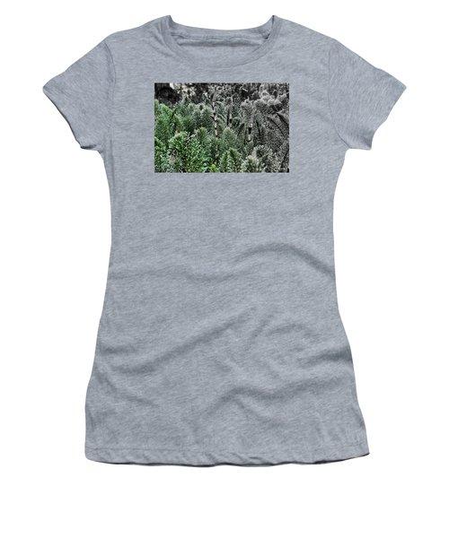 Horsetail Dewpoint Women's T-Shirt