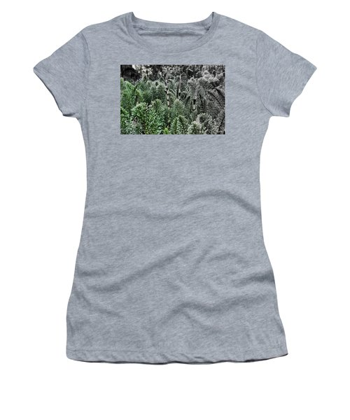 Women's T-Shirt featuring the photograph Horsetail Dewpoint by Rasma Bertz