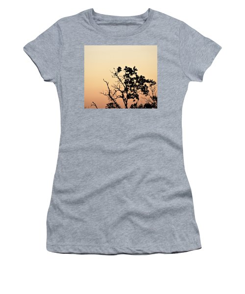 Hush Little Baby Women's T-Shirt (Athletic Fit)