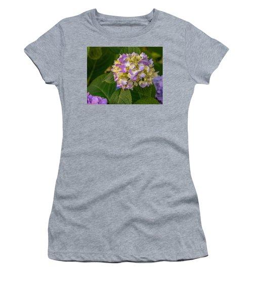 Hydrangea 2 Women's T-Shirt