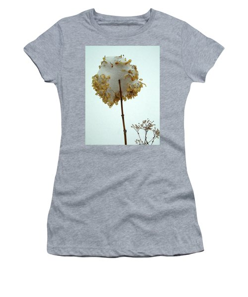 Hydrangea Blossom In Snow Women's T-Shirt (Athletic Fit)