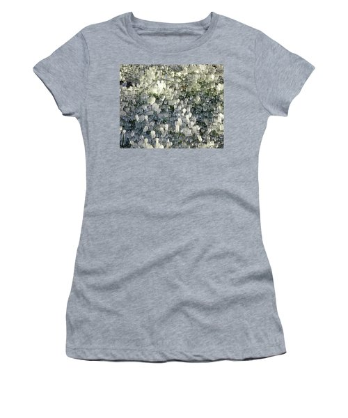 Ice On The Lawn Women's T-Shirt (Athletic Fit)