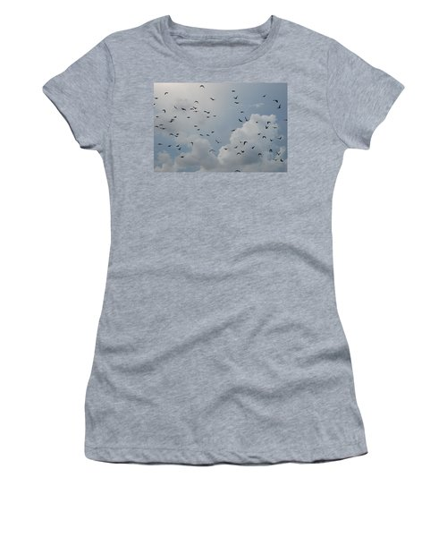 Women's T-Shirt (Junior Cut) featuring the photograph In Flight by Rob Hans