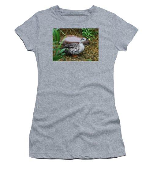 Indian Spot-billed Duck Women's T-Shirt