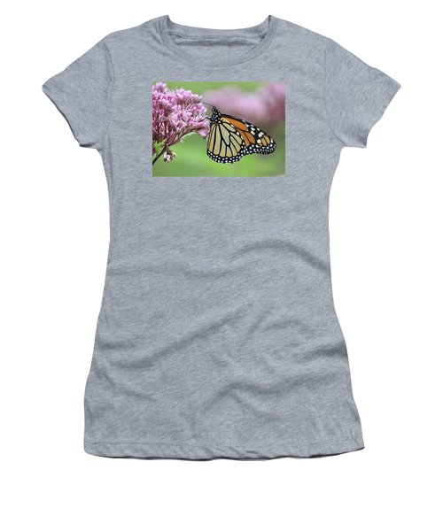 Joe-pye And The Wanderer Women's T-Shirt (Athletic Fit)