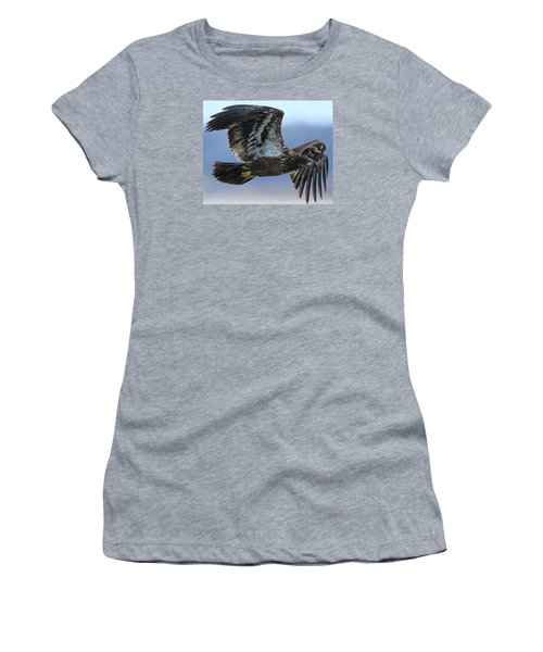 Women's T-Shirt (Junior Cut) featuring the photograph Juvenile Bald Eagle by Coby Cooper
