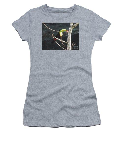 Keel-billed Toucan Women's T-Shirt