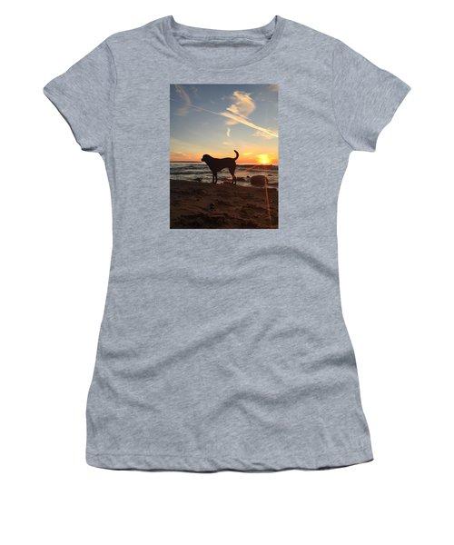 Labrador Dreams Women's T-Shirt (Junior Cut) by Paula Brown