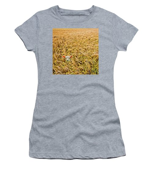 Lamb With Barley Women's T-Shirt