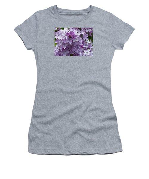 Lavender Lilacs Women's T-Shirt