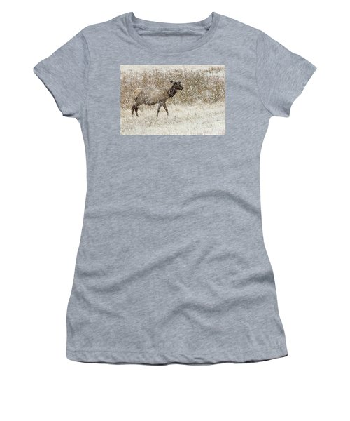 Lead Cow Women's T-Shirt (Athletic Fit)