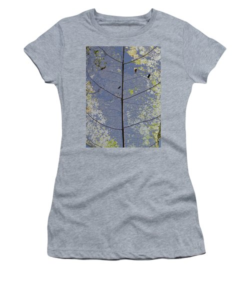 Women's T-Shirt featuring the photograph Leaf Structure by Debbie Cundy
