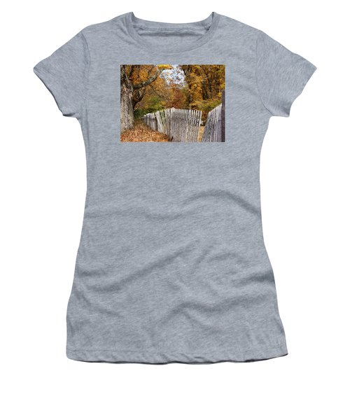 Leaves Along The Fence Women's T-Shirt (Junior Cut) by Lois Lepisto
