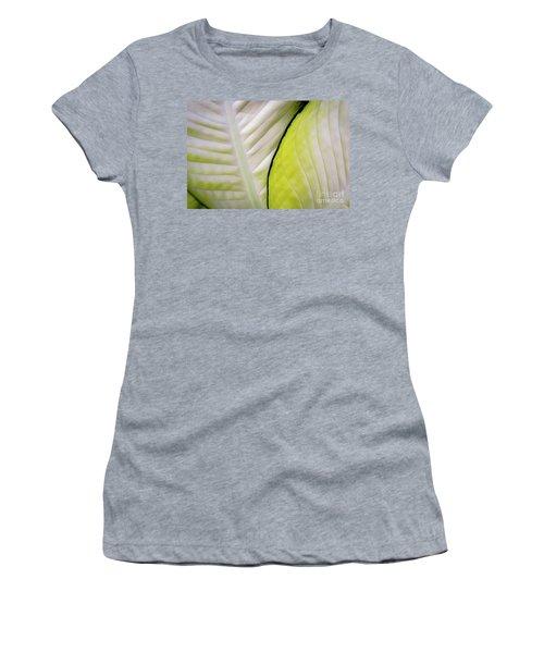Leaves In White Women's T-Shirt
