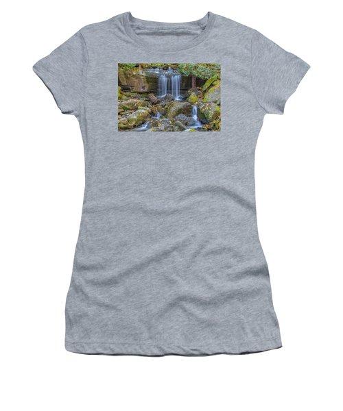 Leconte Creek Waterfall 2 Women's T-Shirt