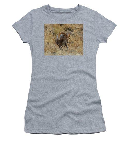 Let's Go II Women's T-Shirt (Athletic Fit)