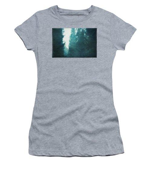 Light Coming Through Fir Trees In Mist Women's T-Shirt
