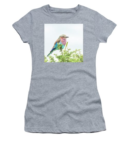 Lilac Breasted Roller. Women's T-Shirt