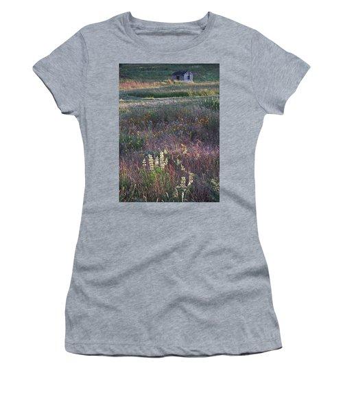 Lupine Women's T-Shirt
