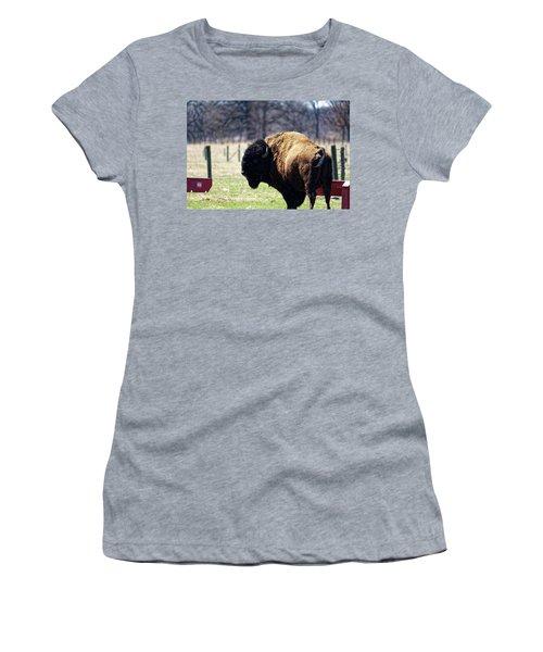 Male Bison Women's T-Shirt