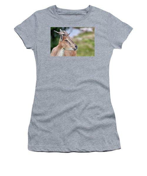 Markhor Women's T-Shirt