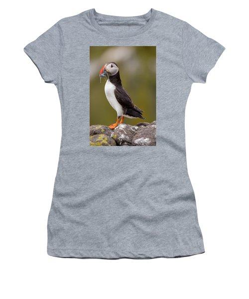 May Puffin Women's T-Shirt