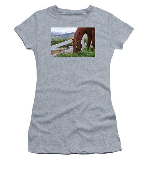 Mccool Grazing Women's T-Shirt