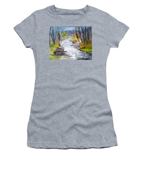 Michigan Stream Women's T-Shirt