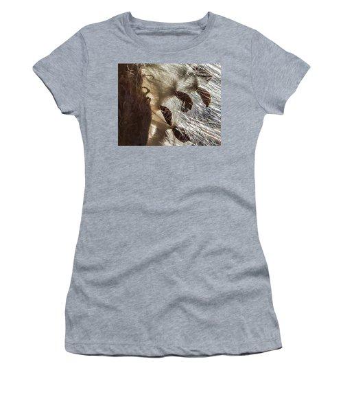 Milkweed Seed Burst Women's T-Shirt