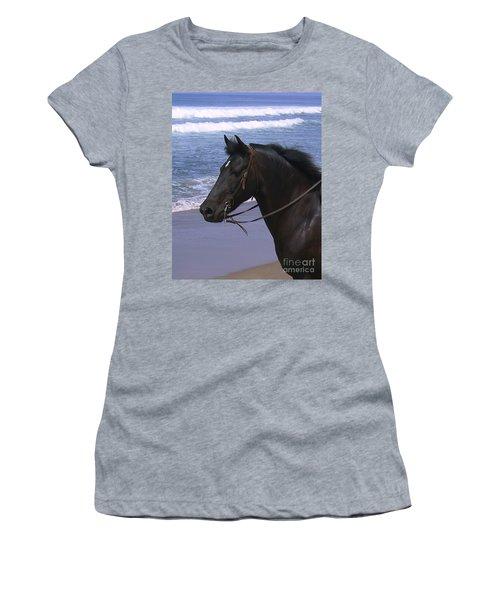 Morgan Head Horse On Beach Women's T-Shirt