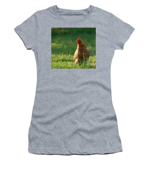 Morning Chicken Women's T-Shirt