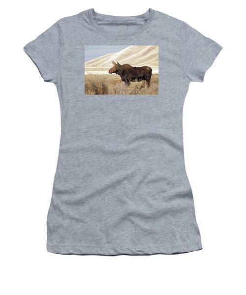 Morning Moose Women's T-Shirt