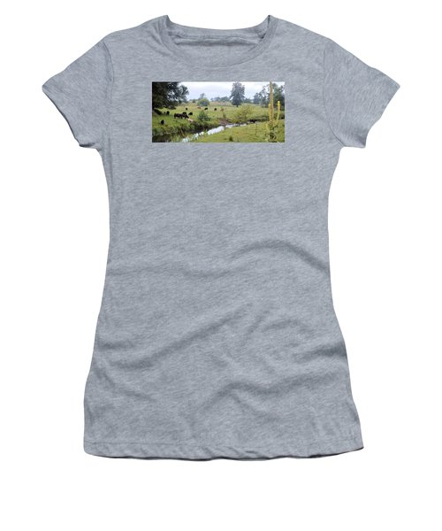 Morning On Coldwater Women's T-Shirt (Athletic Fit)