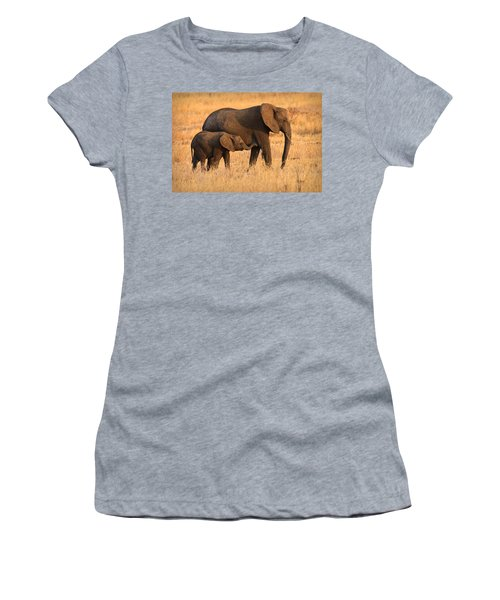 Mother And Baby Elephants Women's T-Shirt