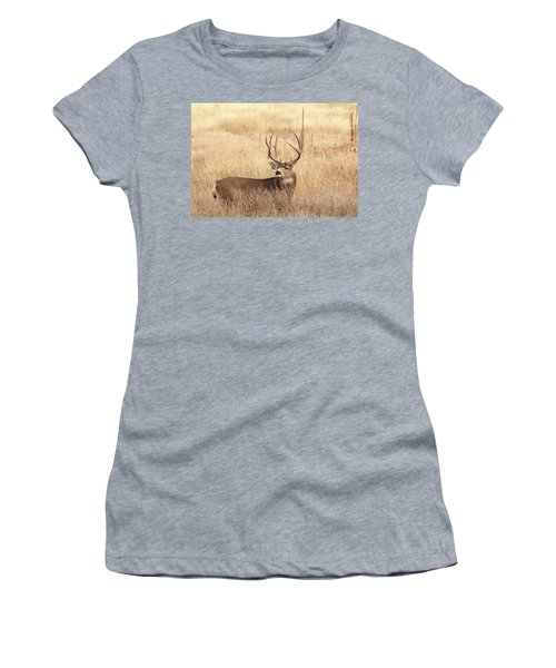 Muledeerbuck2 Women's T-Shirt
