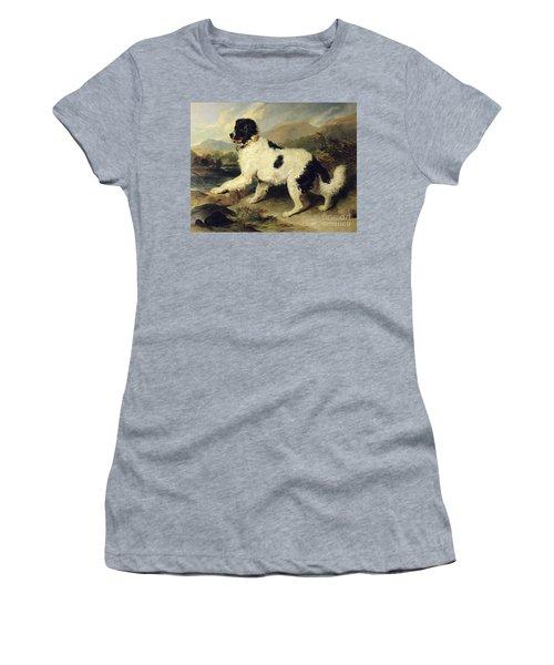 Newfoundland Dog Called Lion Women's T-Shirt