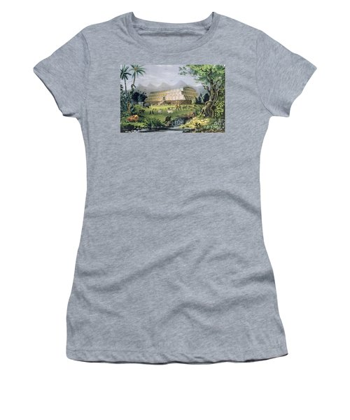 Noahs Ark Women's T-Shirt (Junior Cut) by Currier and Ives