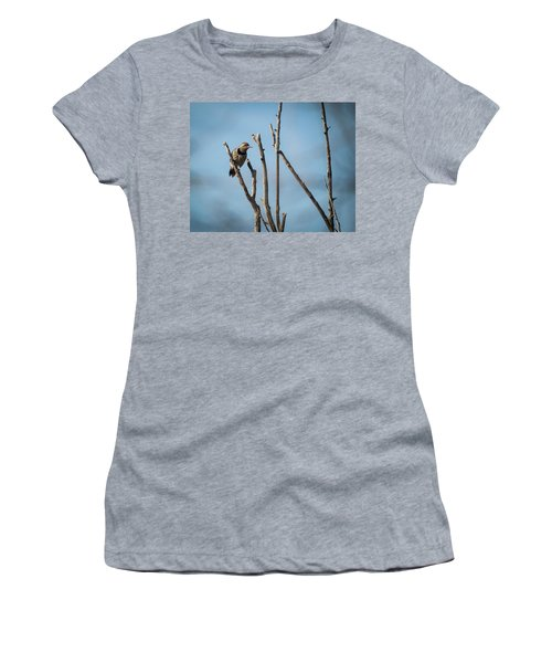 Northern Flicker Woodpecker Women's T-Shirt