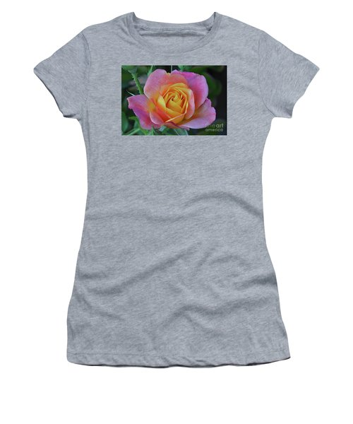 One Of Several Roses Women's T-Shirt (Junior Cut) by Debby Pueschel