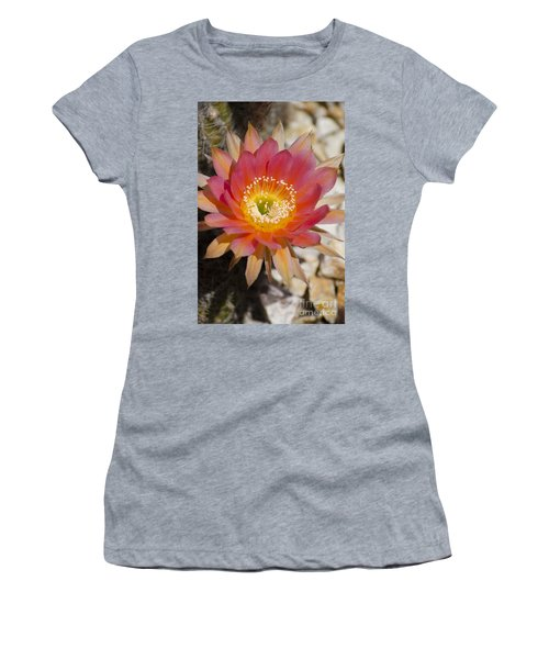Orange Cactus Flower Women's T-Shirt (Athletic Fit)