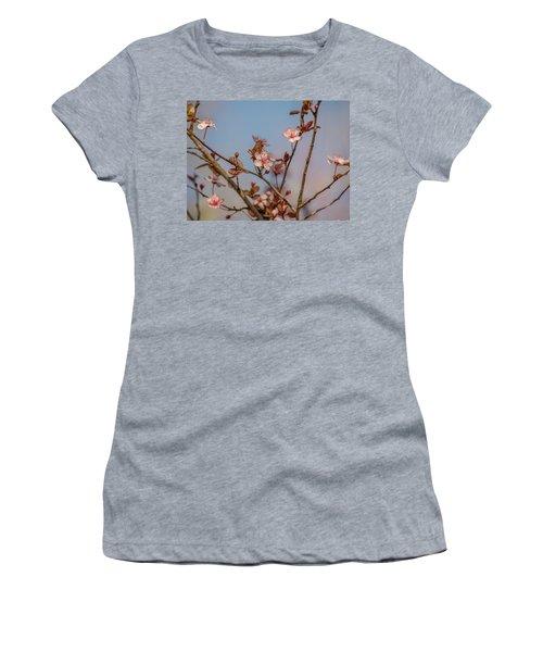 Purple Leaf Sandcherry Blossoms Women's T-Shirt